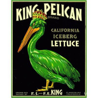 King Pelican California...