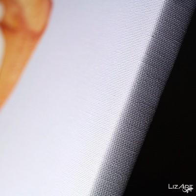 Fotoobraz na plátno 70x50cm